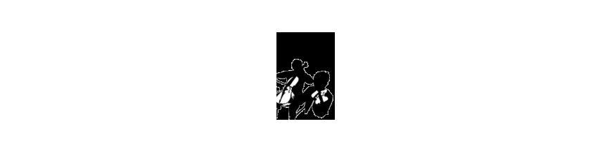 música de cámara dúos de cuerda
