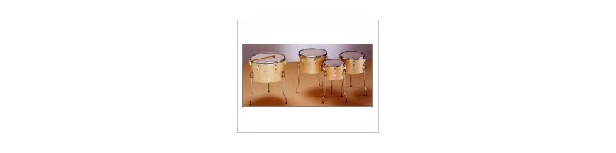 Timbal Escuela