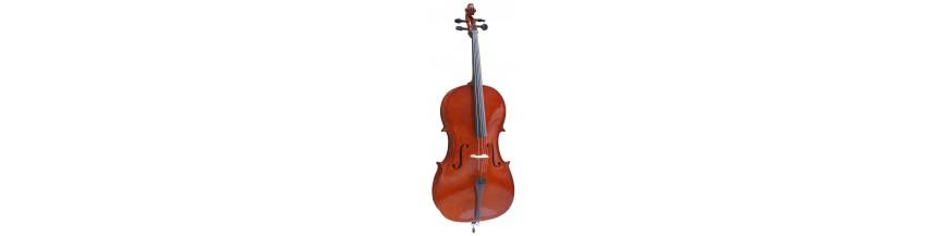 AMADEUS (Instrumentos de cuerda)